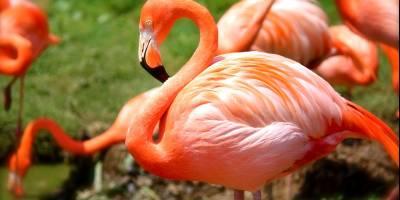 220412 Aqua Zoo